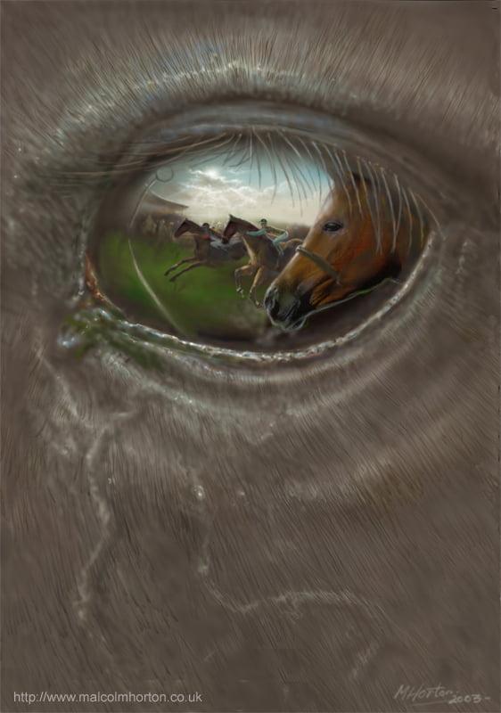 Through the eye of a racehorse